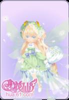 雏菊花语套装