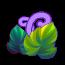紫色大丽花